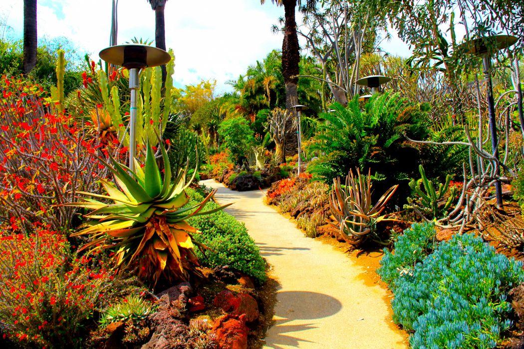 Gardens USA Cactuses Botanical San Marino California Nature Garden wallpaper