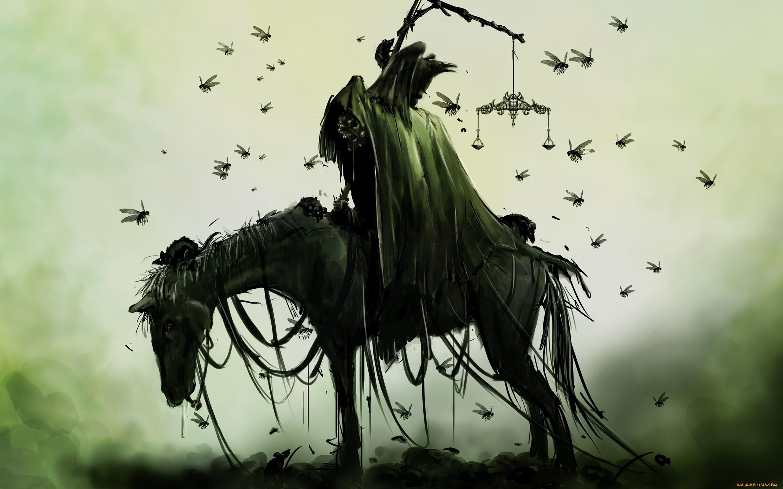 Horse Drawing Death Grim Reaper Bugs Green Dark Wallpaper 2560x1600 112766 Wallpaperup