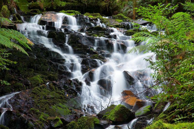 Waterfalls Parks Australia Yarra Ranges Nature wallpaper
