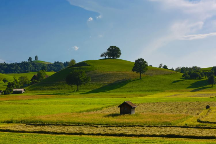 fields hills trees houses nature wallpaper