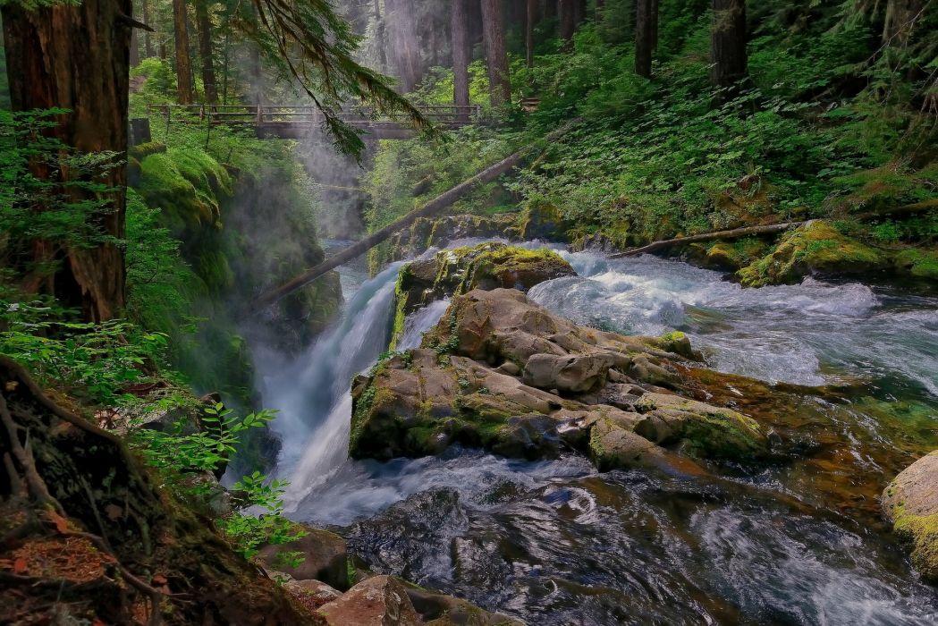 Washington waterfall forest bridge river h wallpaper