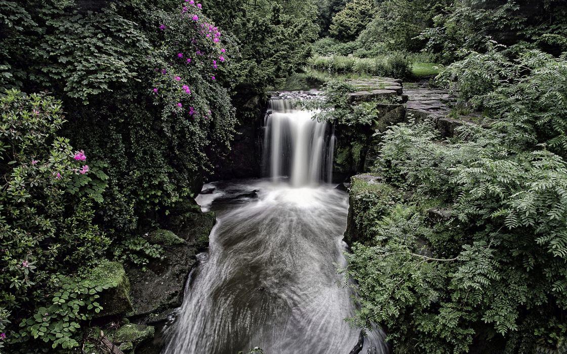 England waterfall forest bush wallpaper