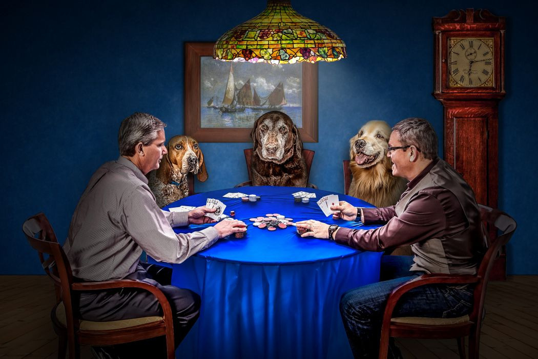 men dogs cards game poker situation chips clock funny wallpaper