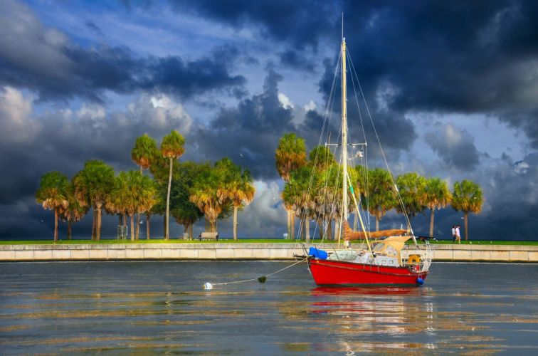 yacht palm trees waterfront wallpaper