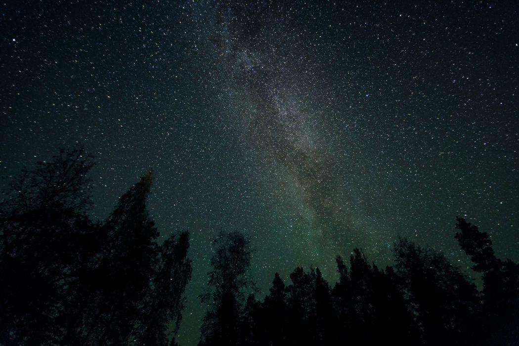 Galaxy Stars Milky Way Night Trees space wallpaper