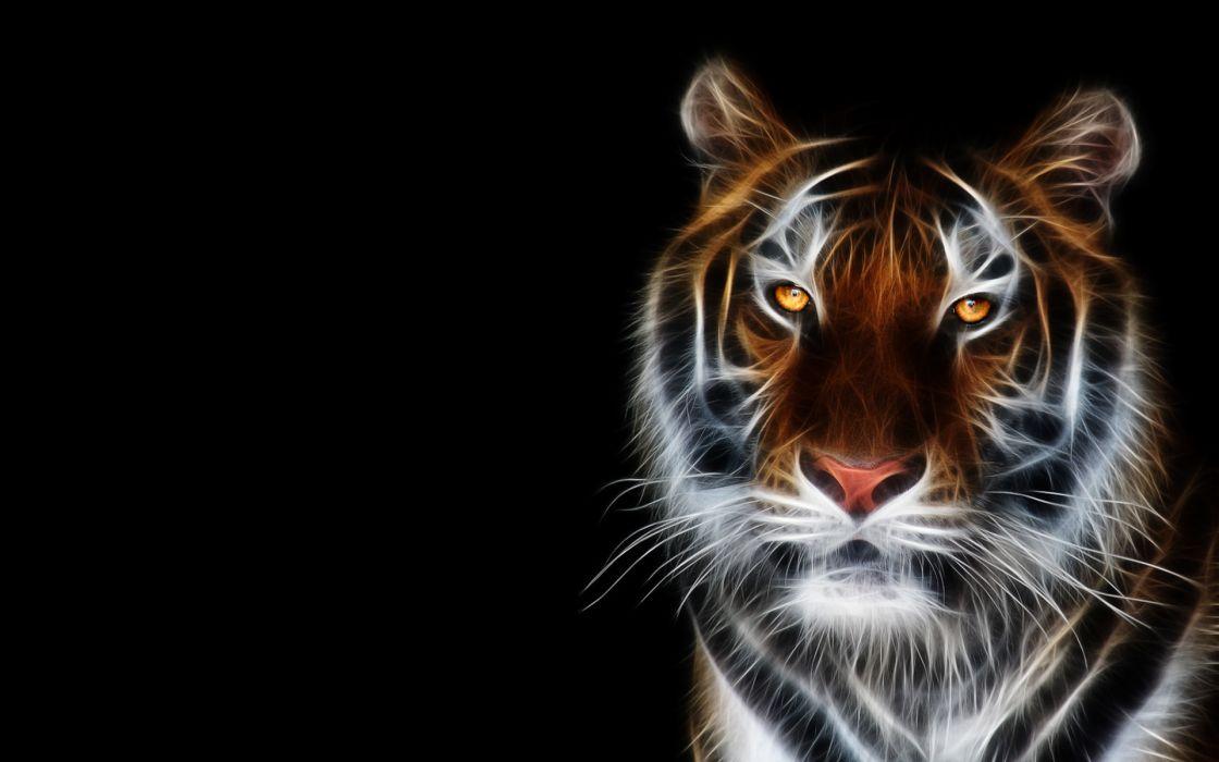tiger fractAL c-g tigers cat cats wallpaper