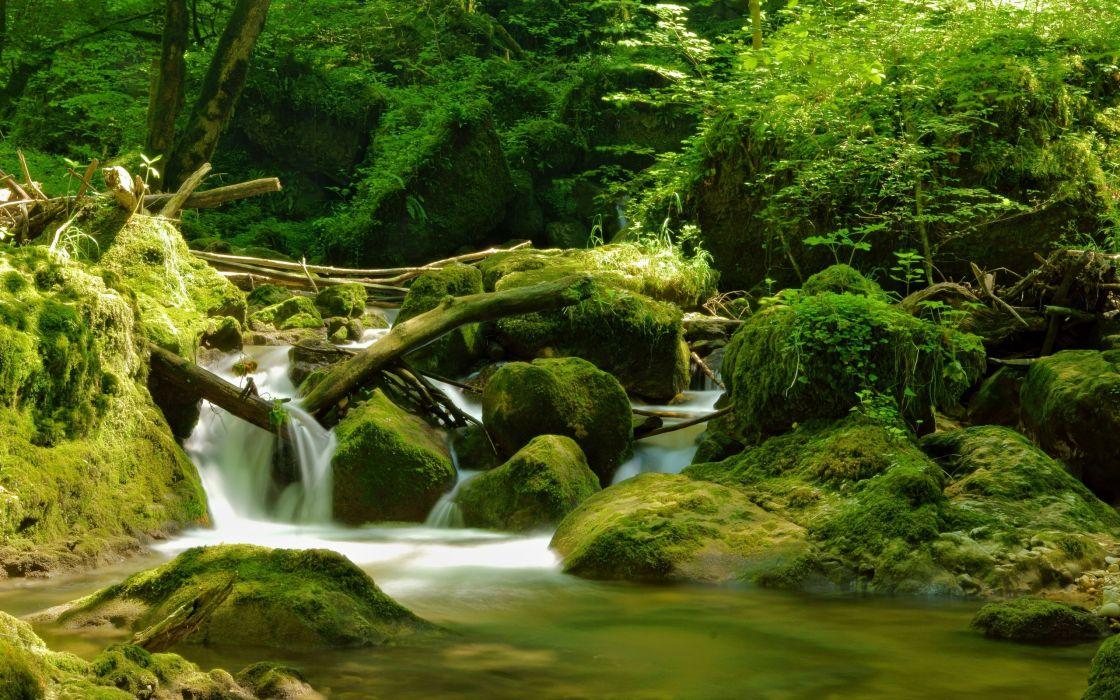 Switzerland river stones wood wallpaper