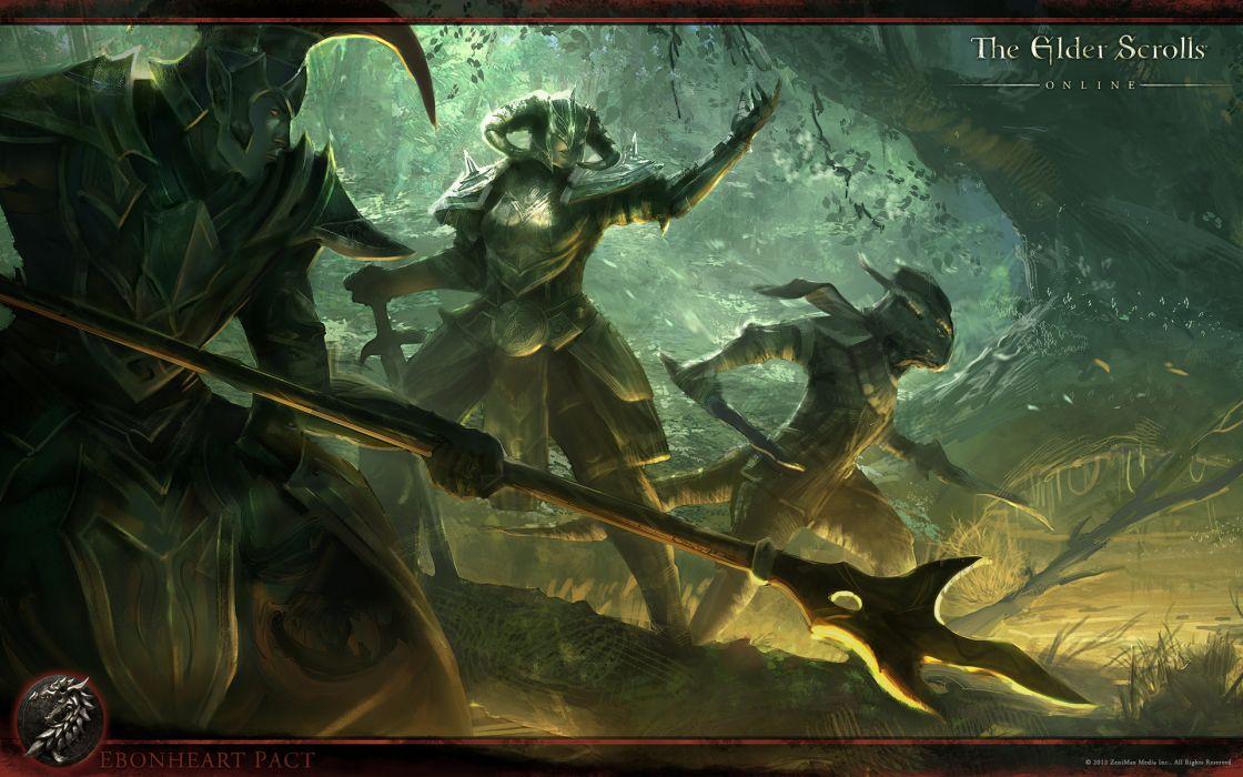 The Elder Scrolls Online fantasy warrior warriors wallpaper
