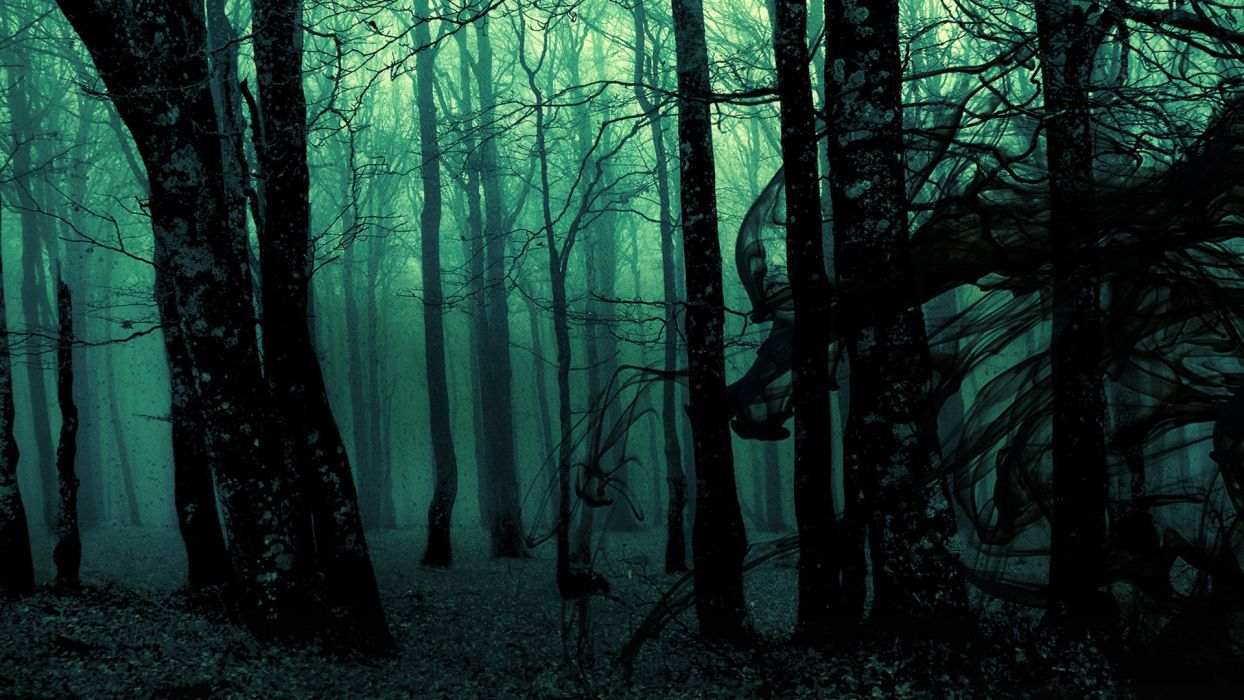 dark ghost gothic wood trees fantasy evil horror wallpaper