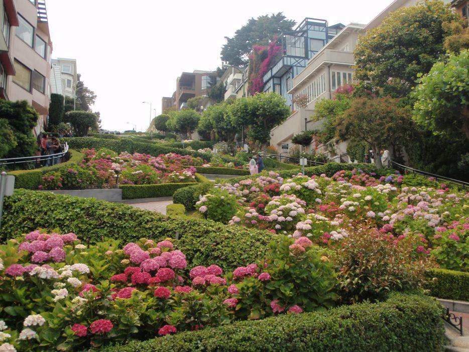 streets architecture garden buildings San Francisco wallpaper