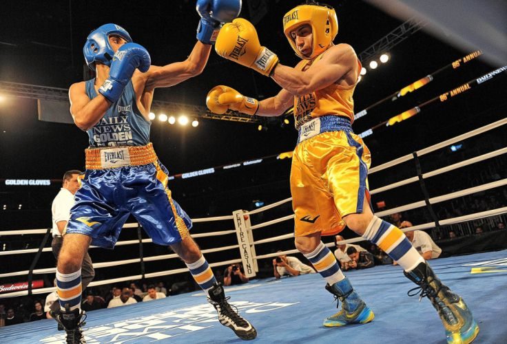 boxing sports sport fighting fight gloves g wallpaper