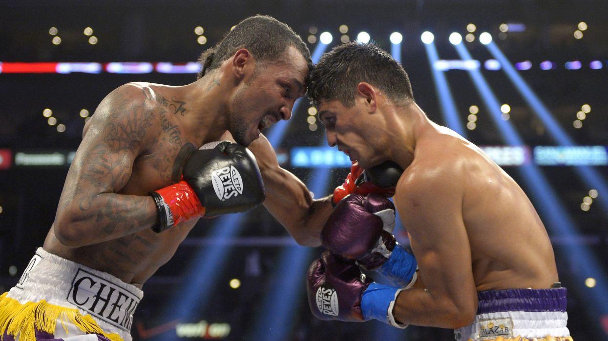 boxing sports sport fighting fight gloves     fd wallpaper