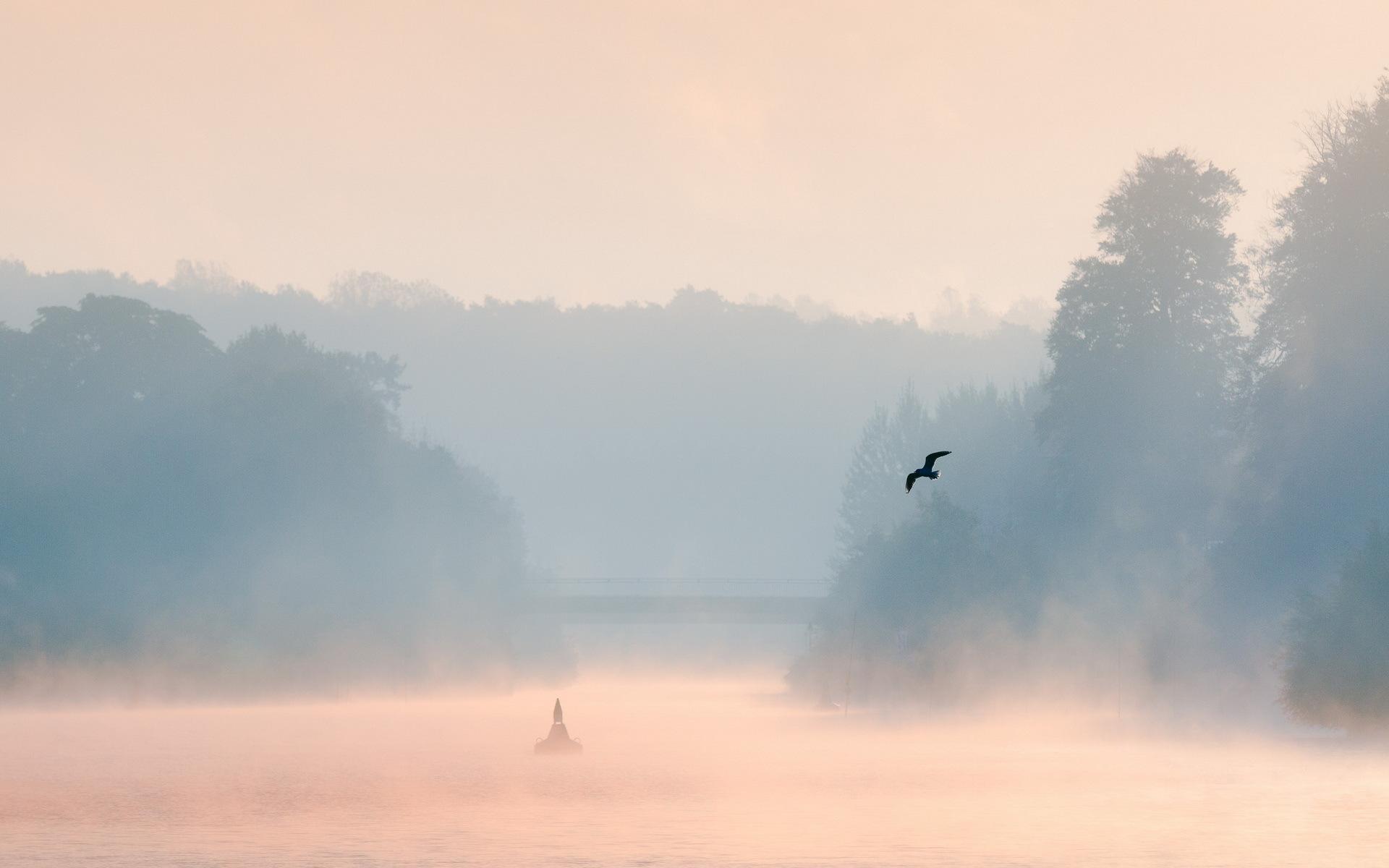 misty fog landscape wallpapers - photo #6
