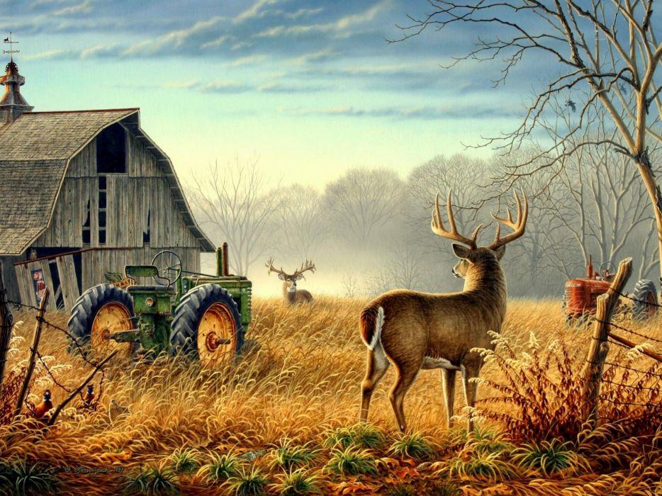 nature trees fences birds fog mist deer barn farm competition Animals Bird mood wallpaper