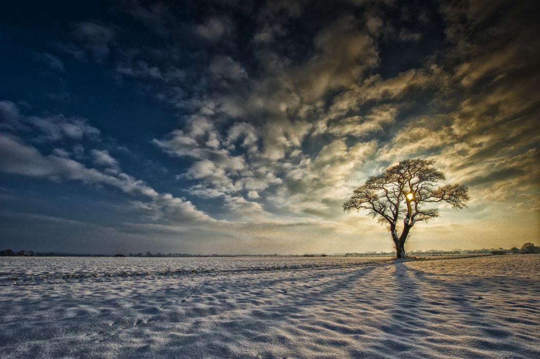 Yorkshire England snow tree sunrise clouds winter wallpaper