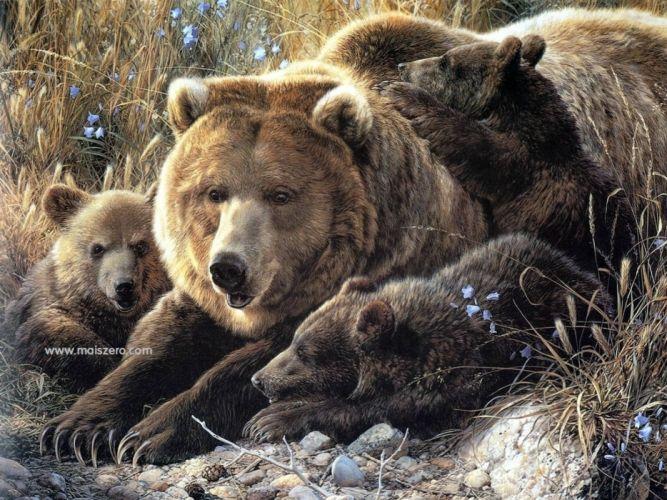 Bears wallpaper
