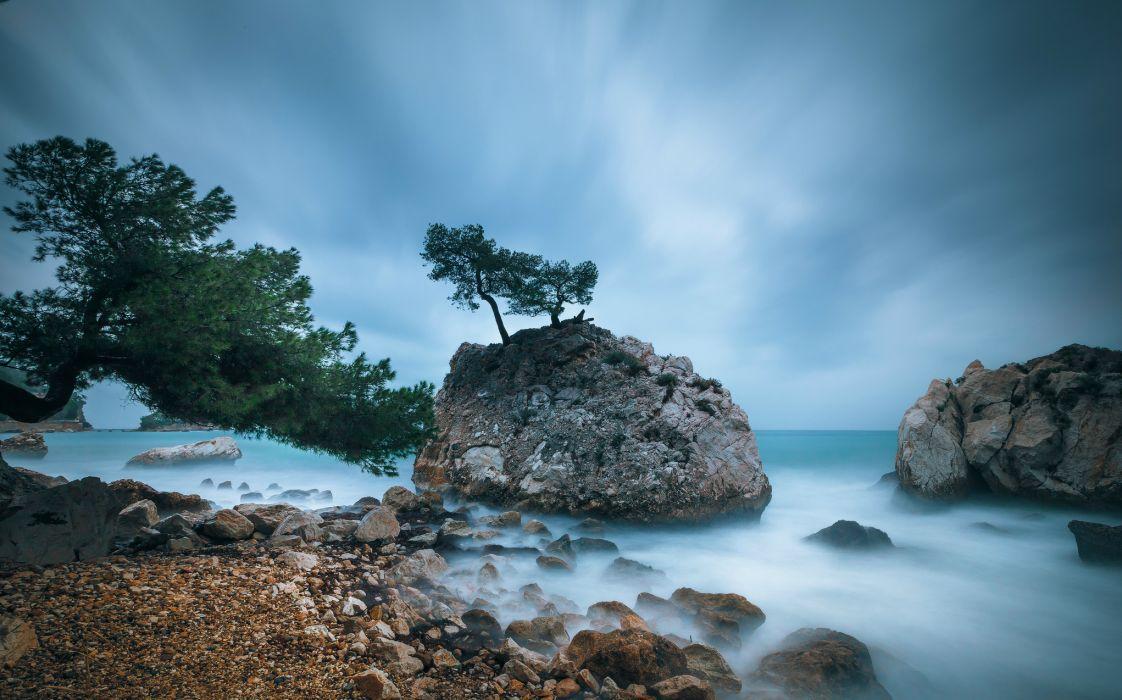 shore coast trees France wallpaper
