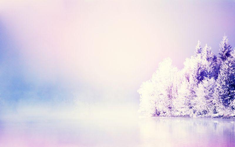 Trees Purple lake reflection bokeh wallpaper