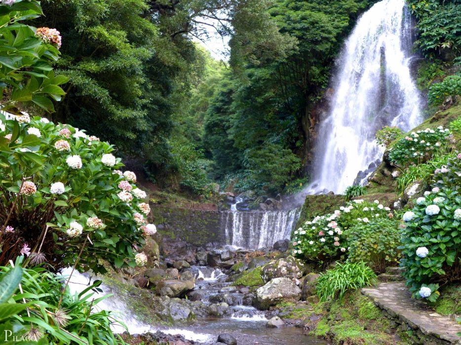 Waterfalls Portugal Achadinha Azores Shrubs Nature wallpaper