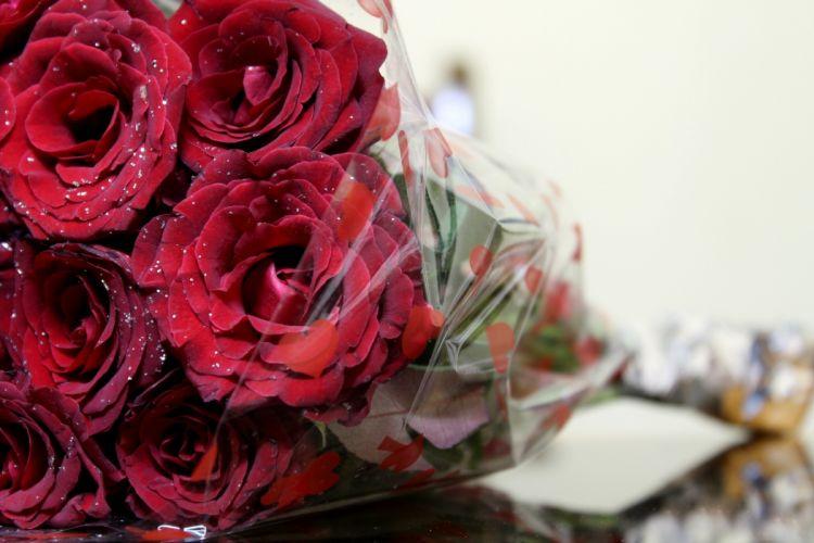 bouquet close-up scarlet rose flowers wallpaper