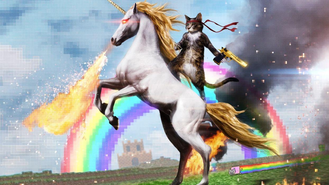 fantasy unicorn wtf funny sci-fi cat cats wallpaper