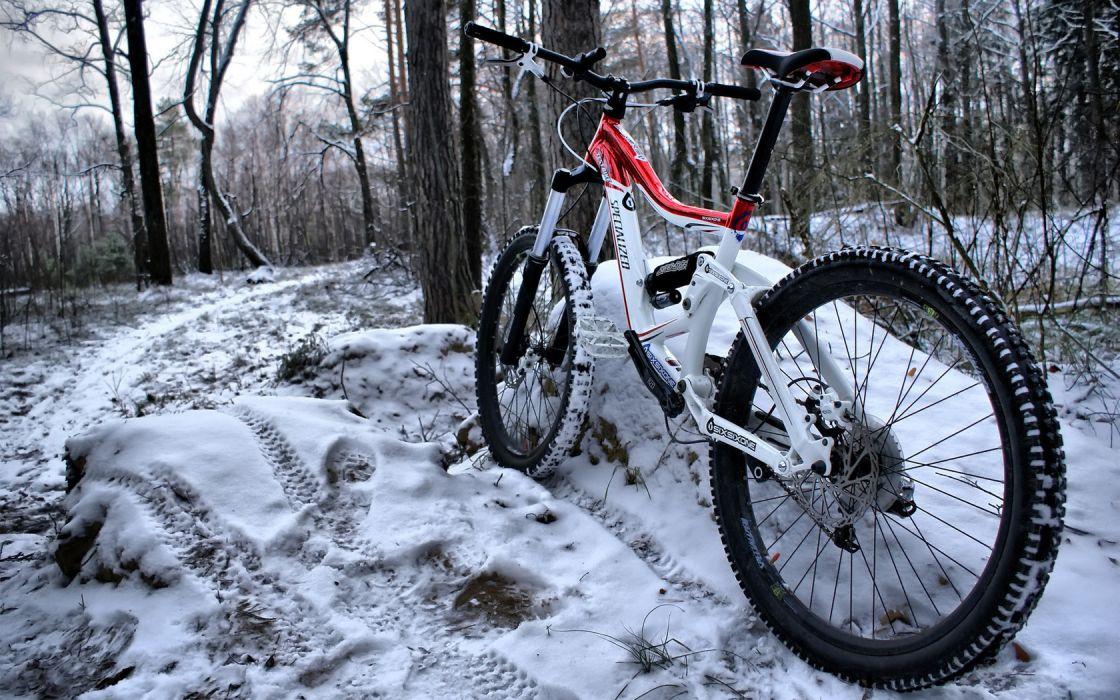 Bike Woods Snow wallpaper