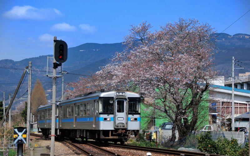 Train Japan wallpaper