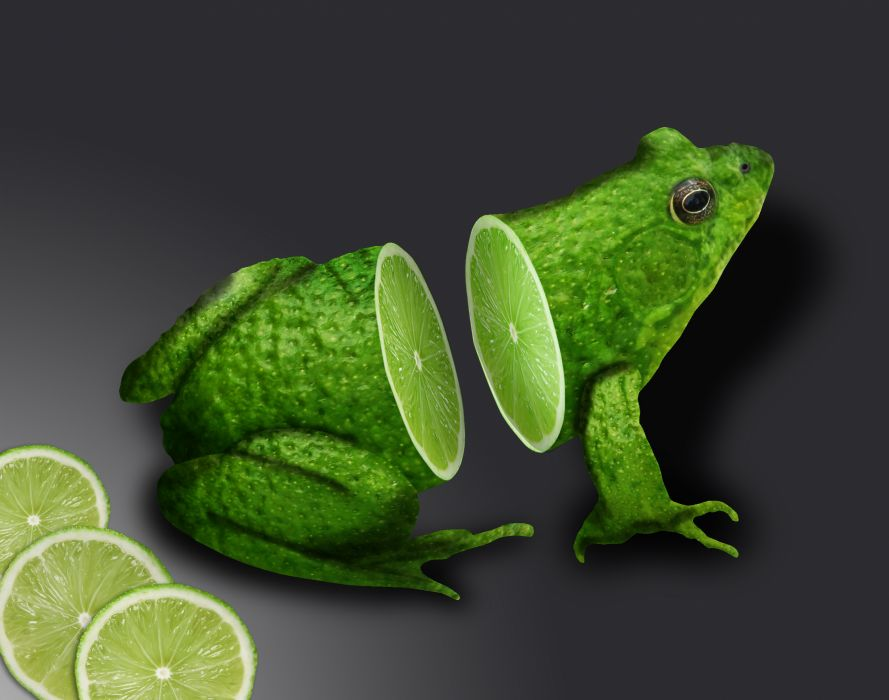 frog lime wallpaper