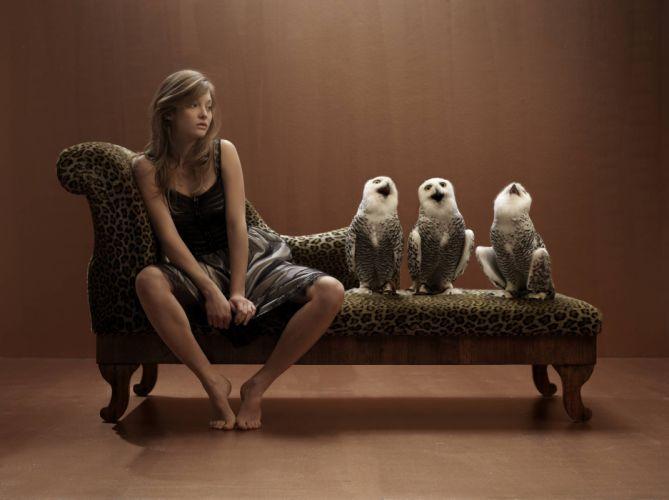 funny owl owls women brunette situation wallpaper