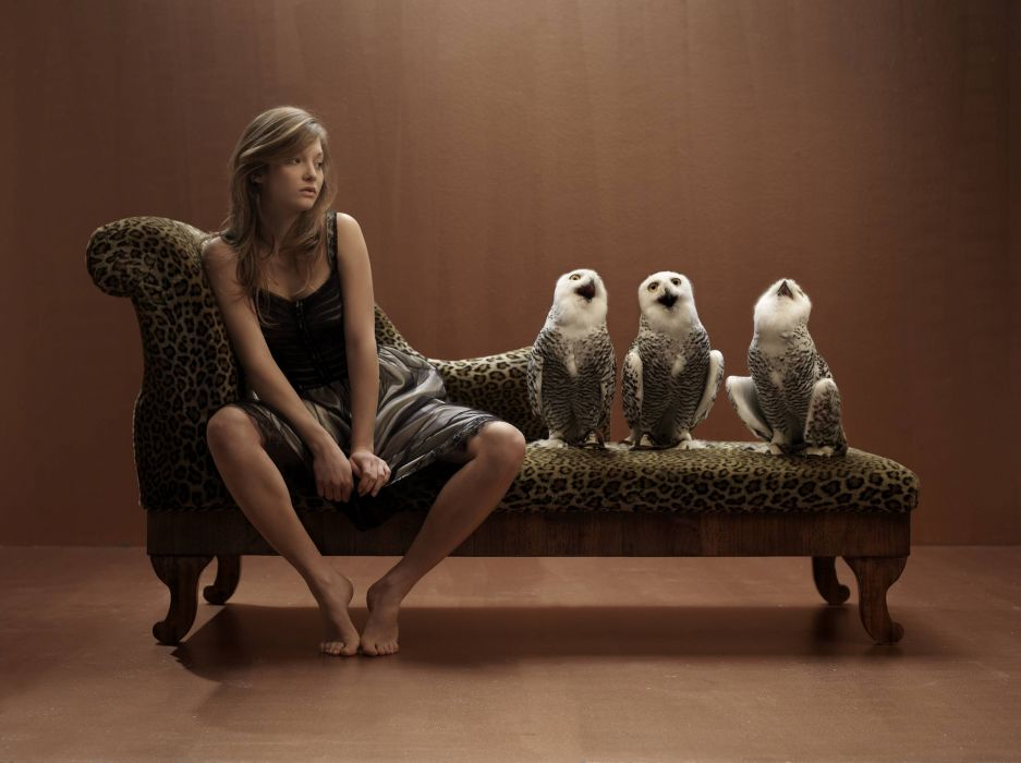 funny owl owls women brunette situation wallpaper