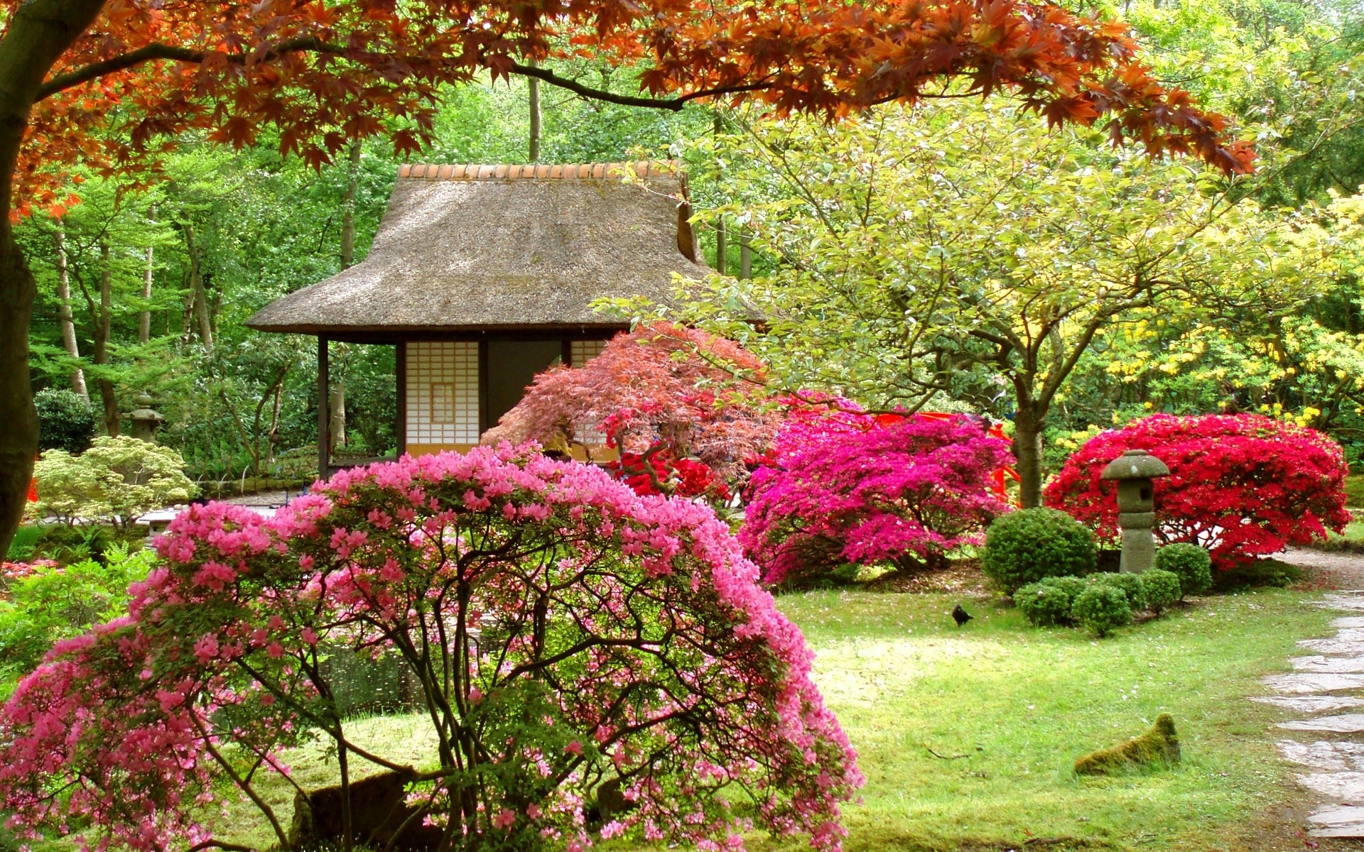 Japan flowers spring japanese garden asian wallpaper for Flowers for japanese gardens