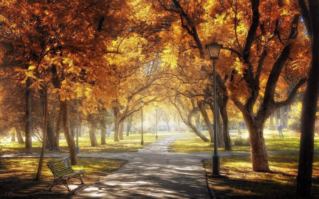 Sevilla  Golden Central Park autumn wallpaper