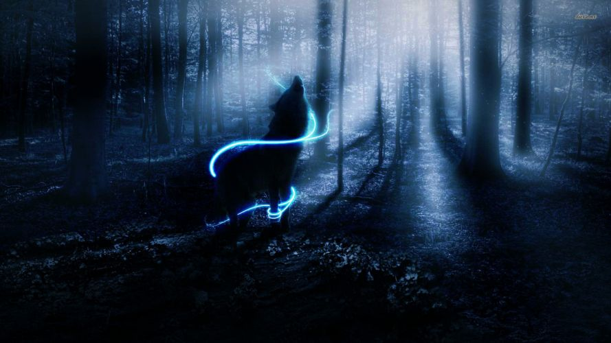 wolf wolves fantasy forest bokeh trees night mood wallpaper