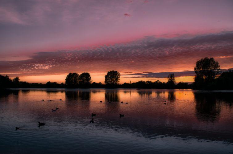 lake great britain england birds bird sunset reflection wallpaper
