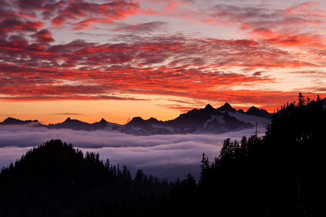 mountain forest sky fog clouds sky sunset wallpaper