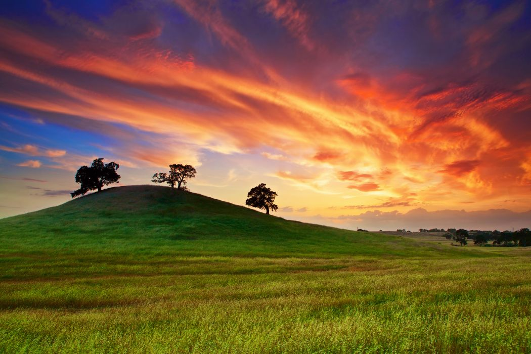 sunset spring May sky clouds field grass trees wallpaper