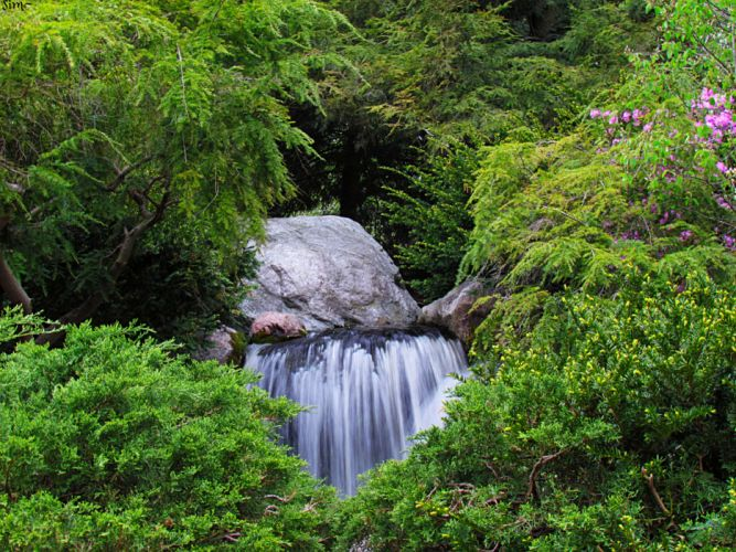 Michigan waterfall forest shrubs boulders stones wallpaper
