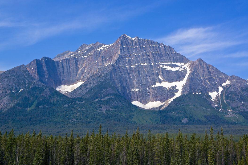 mountain forest sky landscape wallpaper