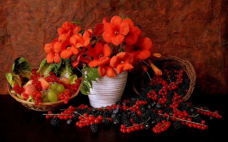 flowers berries red currants blackberries grapes still life f wallpaper