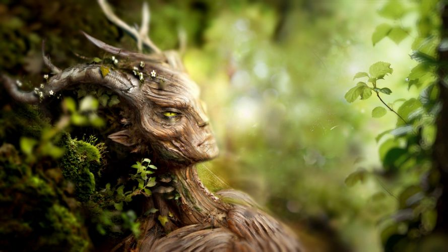 Wood Creature Forest Leaves wallpaper