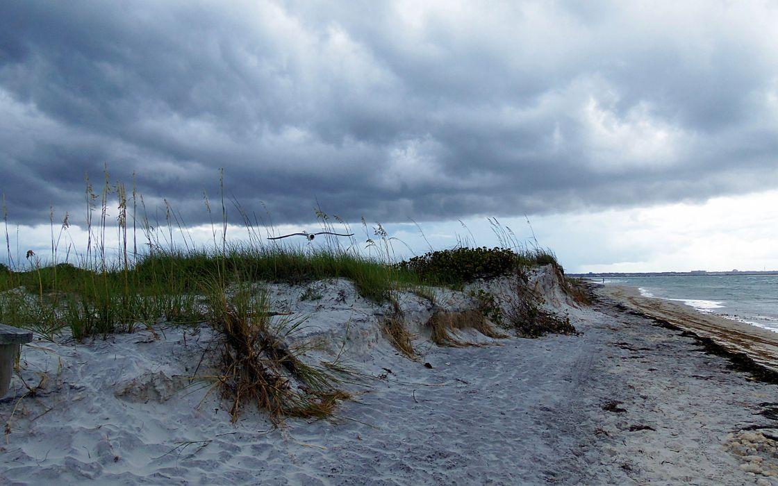 coast clouds seagulls nature wallpaper