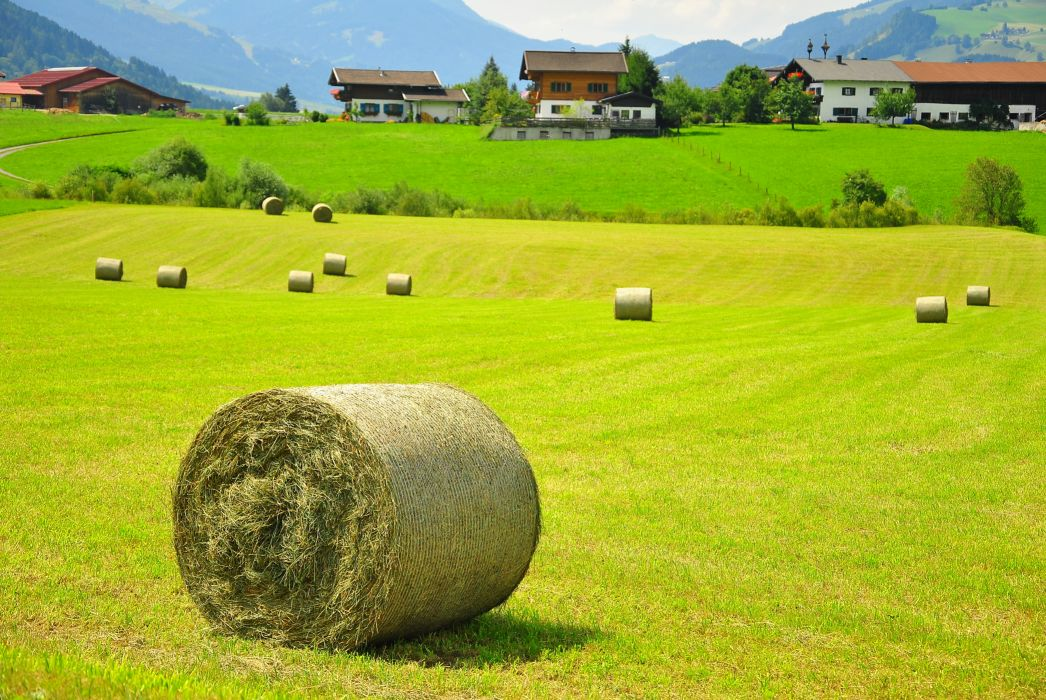 Austria field hay house landscape wallpaper