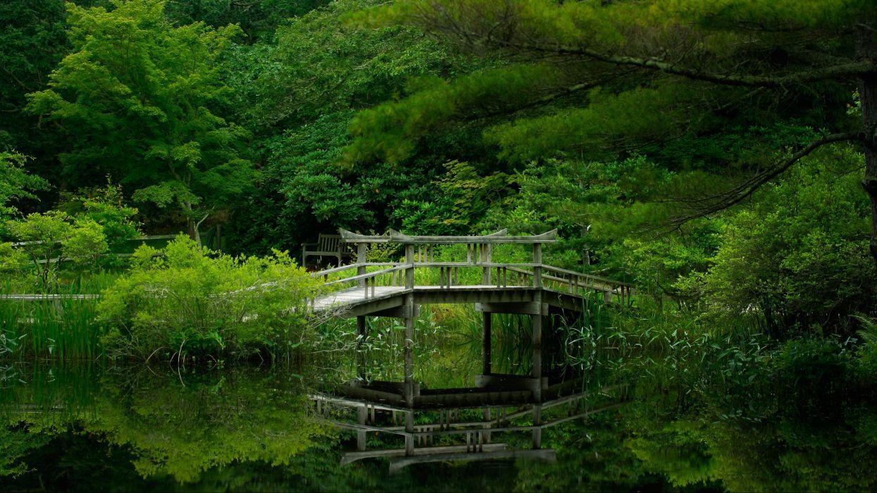 lake forest bridge nature garden reflection wallpaper