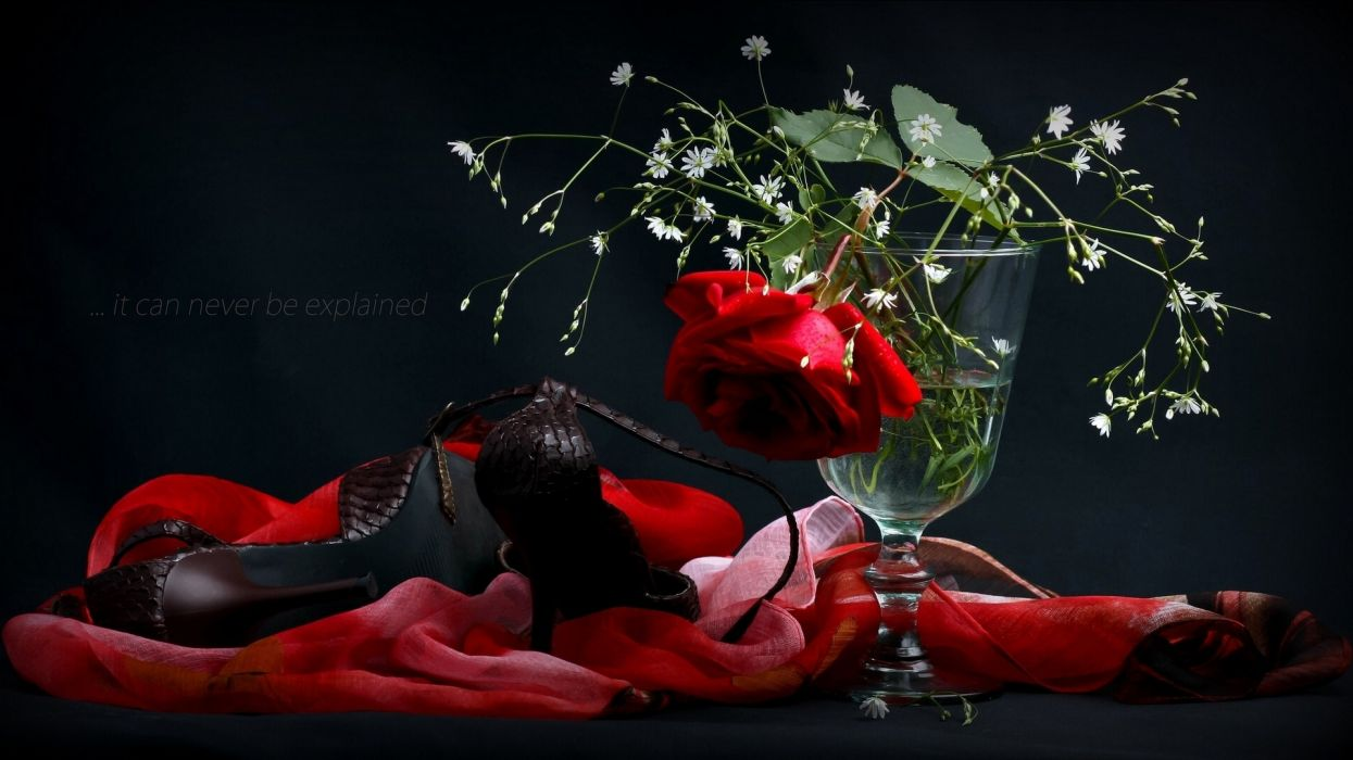 rose shoes vase scarf style wallpaper
