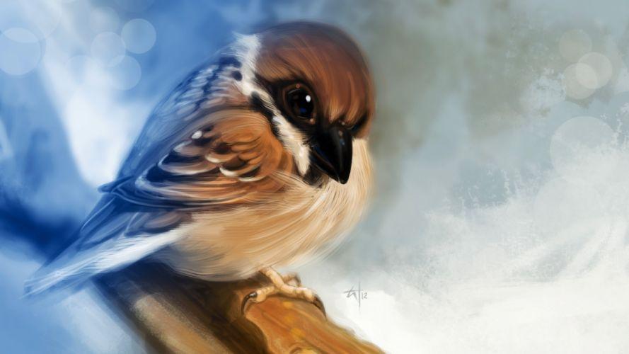 Bird Drawing wallpaper