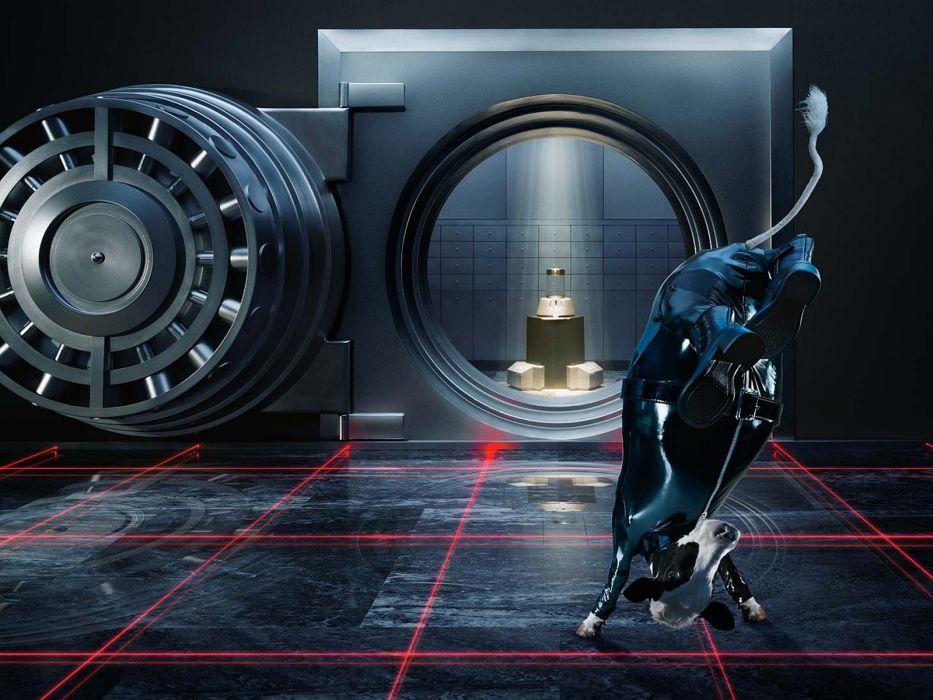 Safe Vault Cow Jump Spy Laser WTF