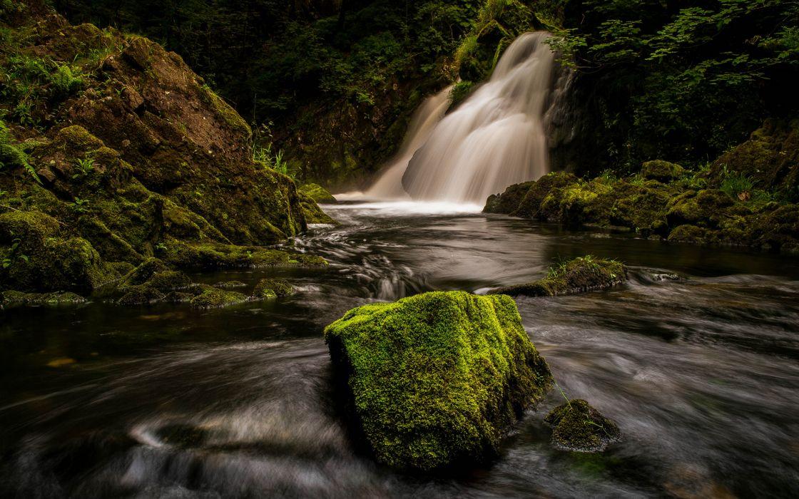 Waterfall Moss River Forest wallpaper