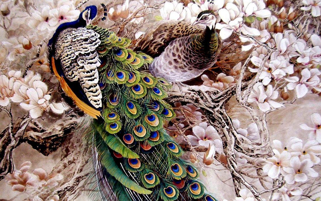 Japanese painting flowers peacocks peacock wallpaper
