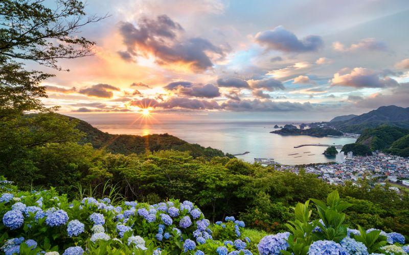 Sunlight Sunset Clouds Ocean Flowers Coast wallpaper