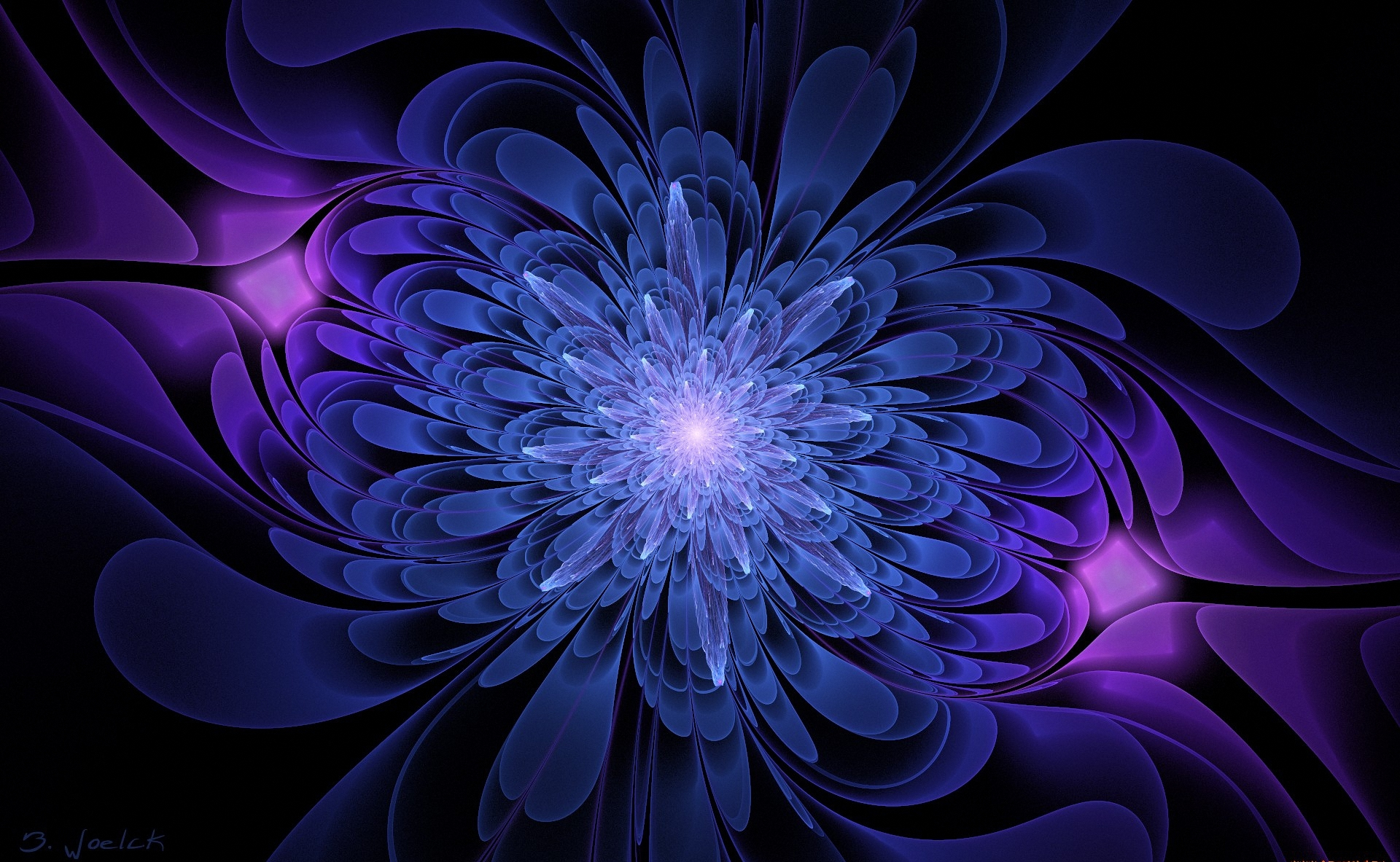 Black background blue and serenevy color graphics flower
